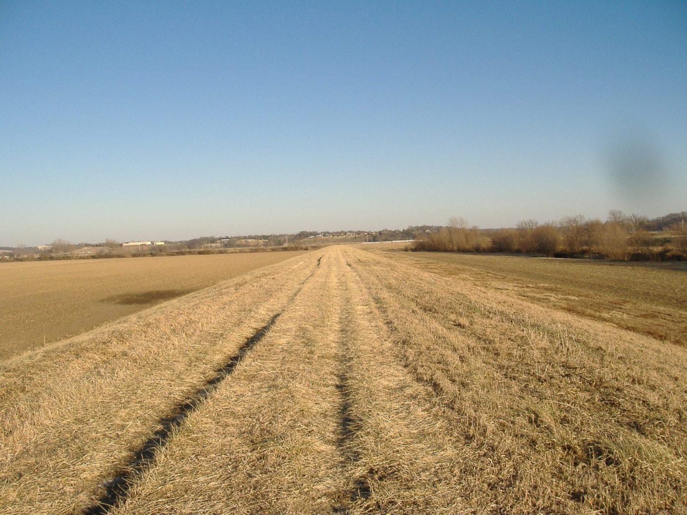 Prairie DuPont Levee